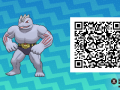 Pokemon Sun and Moon QR Codes (253)
