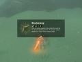 Zelda BOTW Item 3