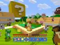 Minecraft Mario (11)