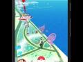 pokemon go (13)