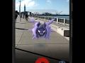 pokemon go (5)