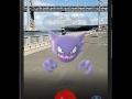 pokemon go (6)