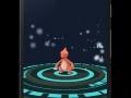 pokemon go (8)