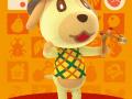 Animal Crossing amiibo Festival (5)