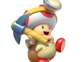 Captain Toad (25)