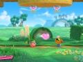 Kirby Star Allies (12)