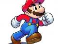 Mario & Luigi Paper Jam Bros (12)