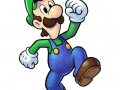 Mario & Luigi Paper Jam Bros (14)
