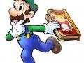 Mario & Luigi Paper Jam Bros (3)