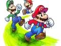 Mario & Luigi Paper Jam Bros (8)