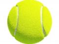 Mario Tennis Ultra Smash (27)