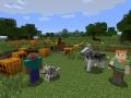 Minecraft (1)