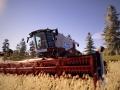 Real Farm (11)