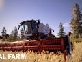 Real Farm (12)