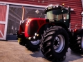 Real Farm (21)