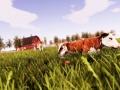 Real Farm (3)