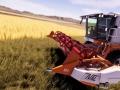 Real Farm (9)