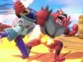 Smash Ultimate (10)