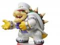 Super Mario amiibo (10)