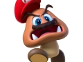 Super Mario odyssey (15)