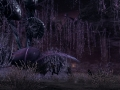 Xenoblade Chronicles X (2)