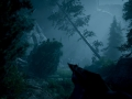 Unity 2019-06-22 , 18:08:18 Unity 2018.2.21f1 Personal (64bit) - Trailer.unity - AoF Trailer[Forest] - PC, Mac & Linux Standalone* <dx11/>