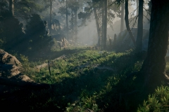 Unity 2019-06-22 , 18:00:25 Unity 2018.2.21f1 Personal (64bit) - Trailer.unity - AoF Trailer[Forest] - PC, Mac & Linux Standalone* <dx11/>