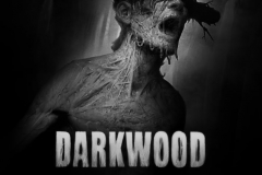 Darkwood (4)