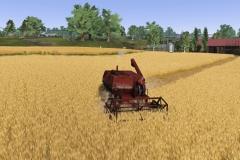 Farmer Dynasty (3)