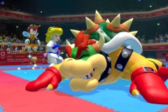 Mario Sonic (5)