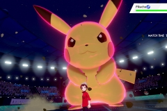 Pokemon Sword and Shield (5)