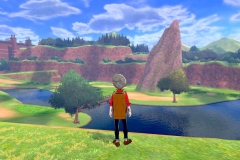 Pokemon Sword and Shield (8)