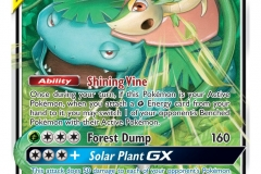 Pokemon TCG (10)