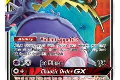 Pokemon TCG (17)