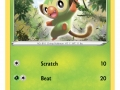 Pokemon TCG (1)