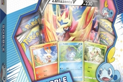Pokemon TCG (9)